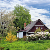 Protecting The Proceeds Of The Sale Of Homestead Property